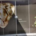 newart-vitrines-01